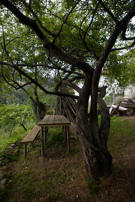 Mesa bajo el ciruelo. Espinosa (Candamo). 24 de julio de 2015 © Miki López
